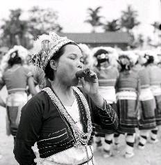 阿美山胞婦女圍著圓圈歌舞的同時,頭目太太卻抽著自己剛捲的大雪茄