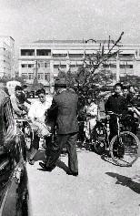 陳納德將軍(中)挑了一棵大耶誕樹,親自搬到車子上,準備帶回家去