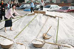 台灣鹽博物館開館 呂秀蓮收鹽