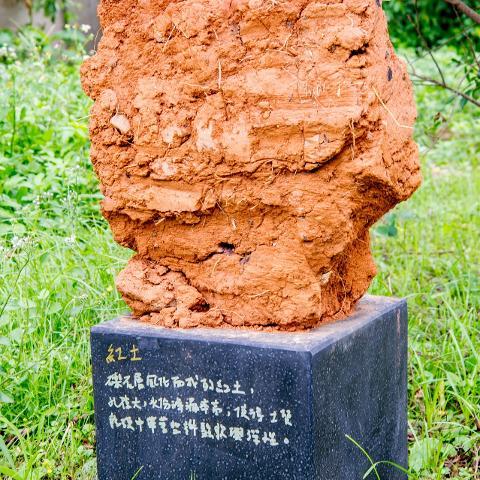 清泉崗公共藝術季 臨時性作品:紅土